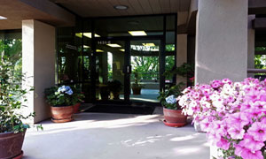 Banyan Hypnosis Center Front Door with Flowers